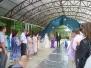 Робот на свадьбе
